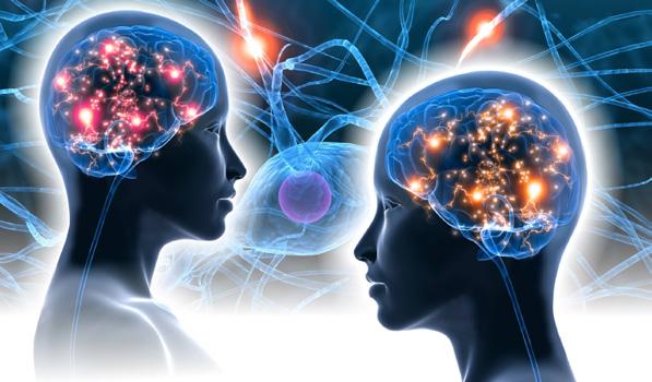 Illustratie, Van filosofie word je een betere neurowetenschapper