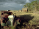 Illustratie, Filosoferen over landbouw - Het gelijk en ongelijk van Wendel Berry